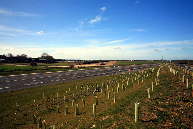 Bourn Airfield across new dual-carriageway stretch of A428