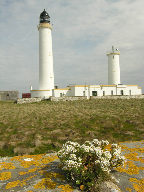 Muckle Skerry Lighthouse