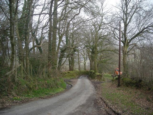 Lane near Blaen-cyswch