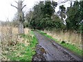 TL4045 : Muddy track - southern boundary of Fowlmere by Logomachy