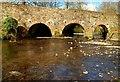 J3268 : The Minnowburn Bridge near Belfast (6) : Week 14