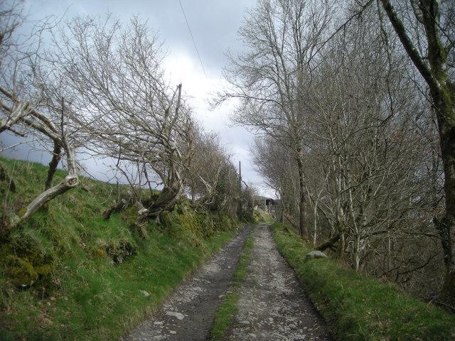 Ex-footpath to Blaen-y-cwm Farm