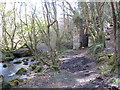 SW7329 : Ruined wheel pit in the woods below Comfort by Rod Allday