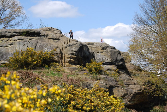 Outcrop of Tunbridge Wells Sandstone at Toad Rock, Rusthall