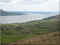 J1515 : Carlingford Lough from the Clermont Pass Road by Oliver Dixon