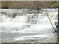 NU1228 : Water flows over dam on the Waren Burn at Twizell Mill by Alfie Tait