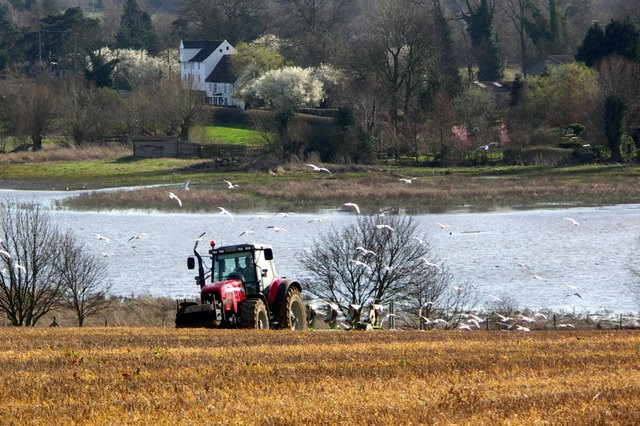 Ploughing the field above Ixworth water meadows