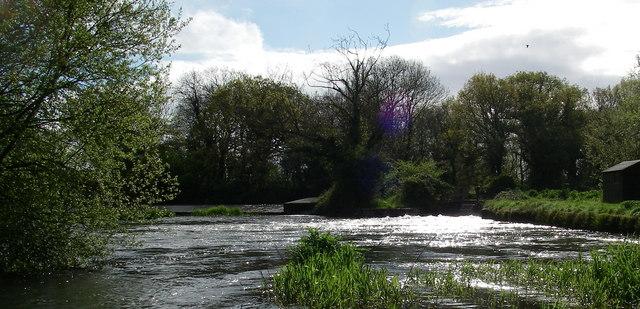 Weir above Bicton
