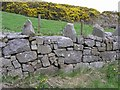 H5448 : Stone wall, Grenaghnagee by Kenneth  Allen