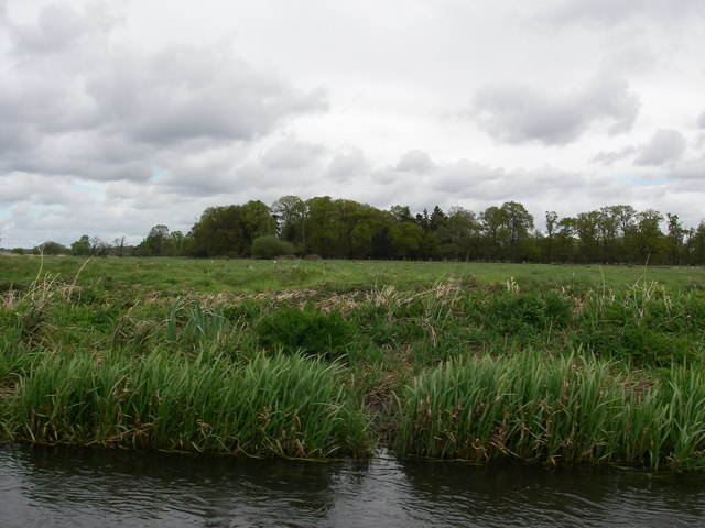 Lifeland Copse and Meadows