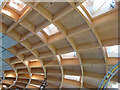 SX0554 : Wooden roof of The Core - Eden Project by Pauline E