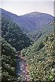 SN7477 : Rheidol Gorge, Devil's Bridge taken 1963 by William Matthews