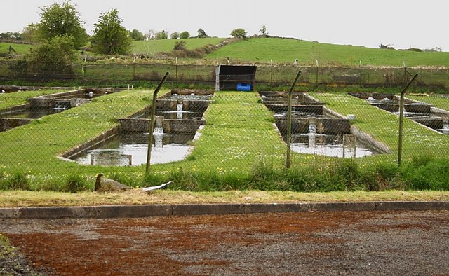 Fish farm ponds kevin higgins geograph ireland for Pond construction for fish farming