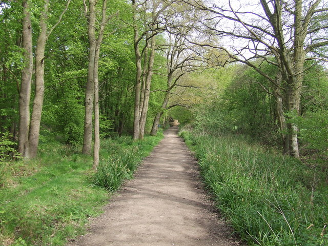 Ermine Street at Danemead Nature Reserve
