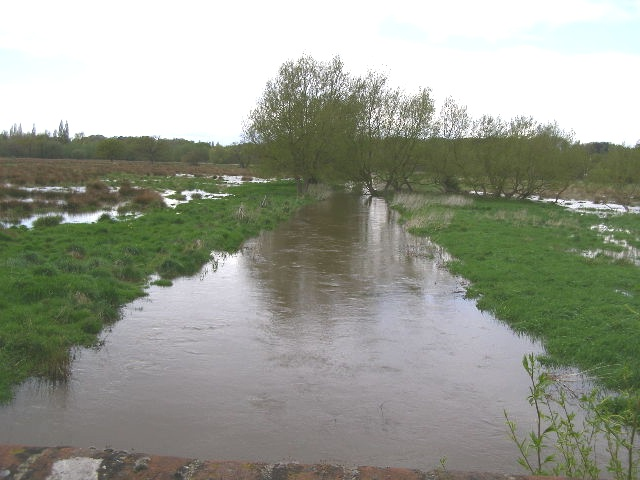Abbey Stream, from Bourne Stream Bridge