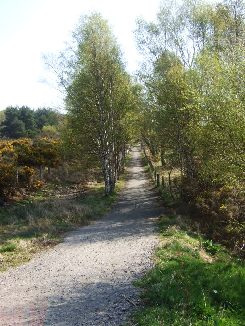 Up-line of old Deeside Railway