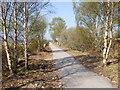 NO4998 : Down-line of old Deeside Railway by Stanley Howe