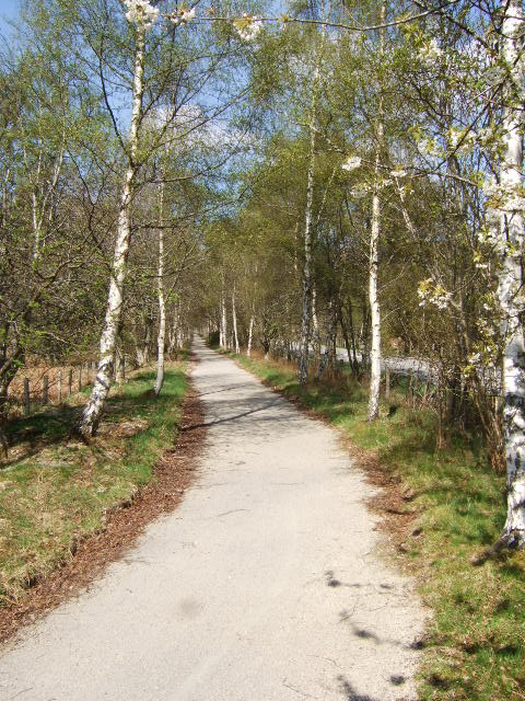 Old Deeside Railway route to Ballater