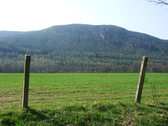 View south from old Deeside Railway near Tullich