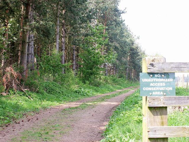 Track to Floddenford Plantation conservation area