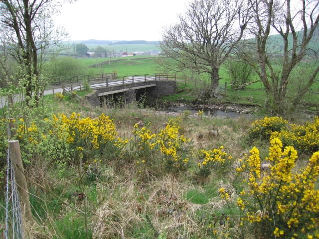 Upland bridge