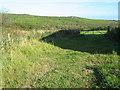 SW4332 : Farmland at Trevean Farm by David Medcalf