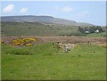 G7312 : Hills near Treanscrabbage by Oliver Dixon
