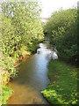 SW7840 : The Carnon River by Rod Allday