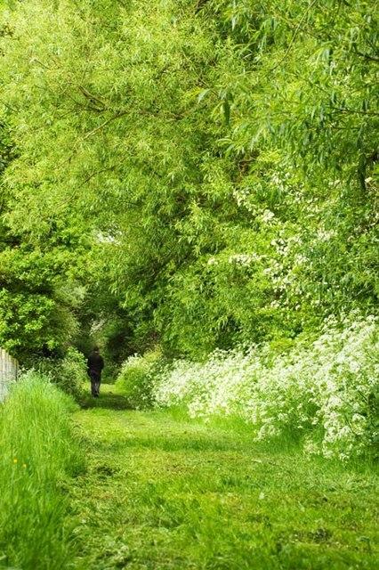 Green Lane, Botesdale
