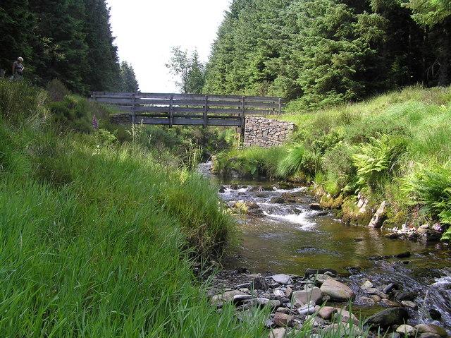 River Severn, Wooden footbridge (unnamed)
