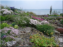 G6244 : Alpine garden overlooking Drumcliff Bay by Kay Atherton