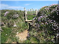 SW6344 : Stile on the coastal footpath above Basset's Cove by Rod Allday