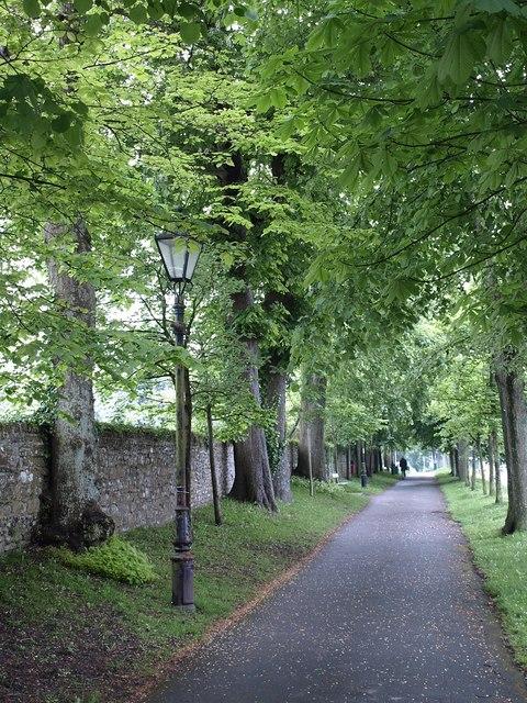 Colliton Walk, Dorchester