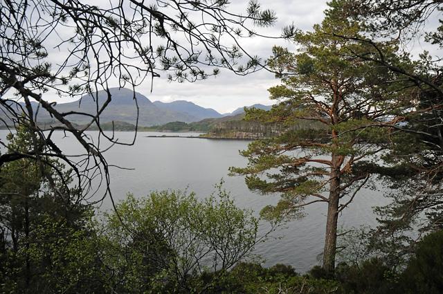Loch Shieldaig and Shieldaig Island