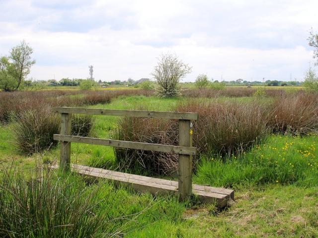 Crewe - Coppenhall Moss