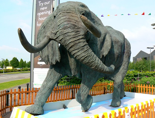 Elephant, Swindon Designer Outlet, Swindon