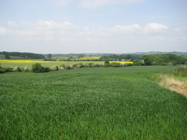Danesmoor (site of the Battle of Edgcote)
