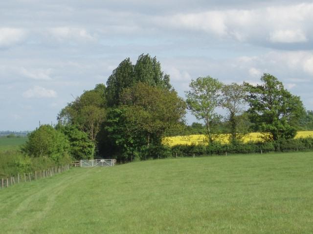 Oxford Lane byway