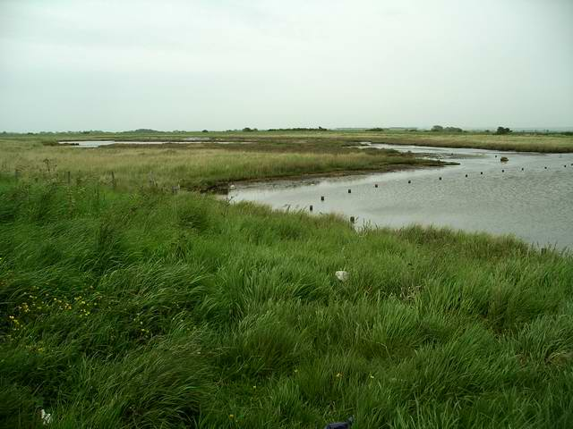 Lagoons, Tetney Marshes nature reserve