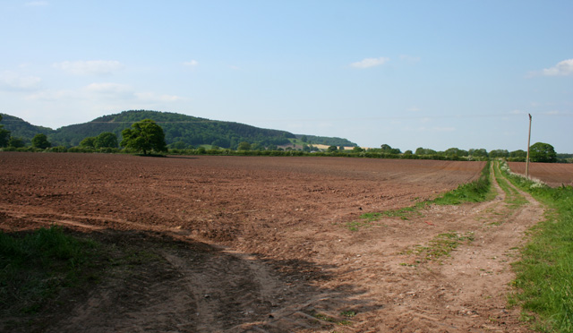 Field to the east of Bulkeley