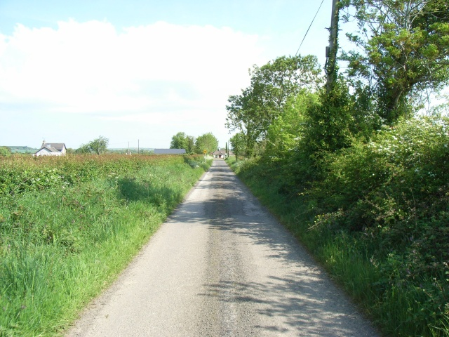 Lane at Crewbane, Near Slane, Co. Meath
