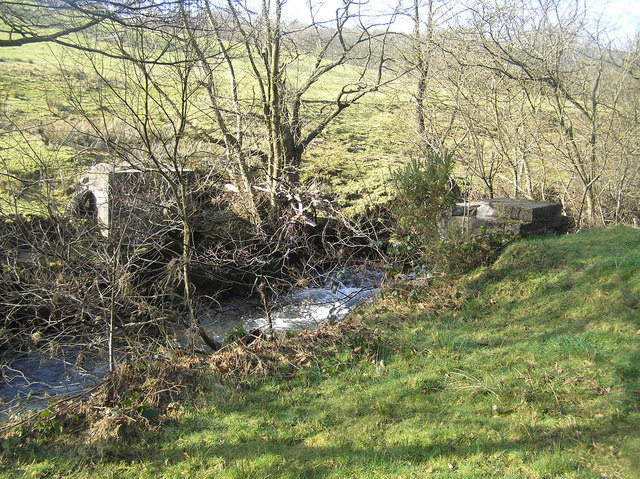 River Severn, old bridge supports,Tan Hinon