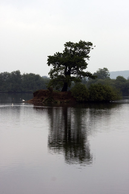 Island with tree in Coneries Pond.