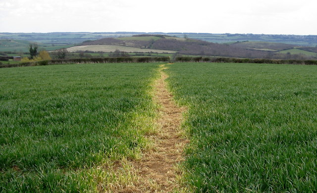 Footpath to Lyddington