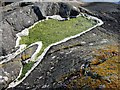 NR7273 : Rockpool, Loch Caolisport : Week 22
