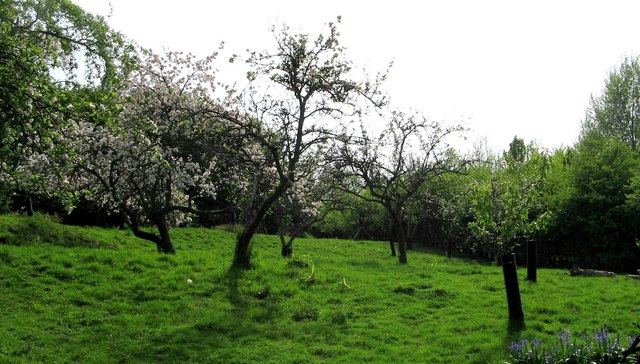 The Orchard, Eaglethorpe