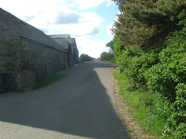Road by farm at Tongside