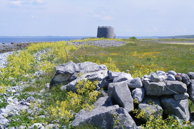Martello Tower - north shore of Aughinish - Aughinish Townland