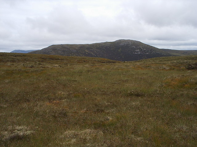 More springy moorland