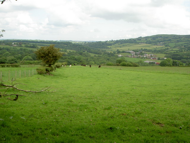 Footpath to Llanfynydd